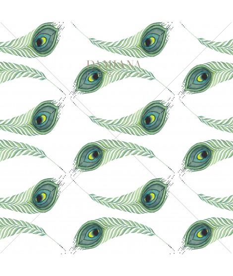 Pattern PAVO WAVE